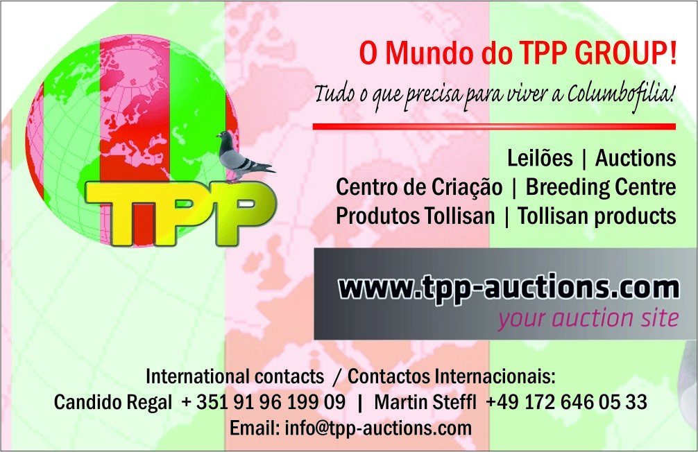 tpp-auctions.com