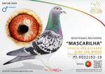 MYC 20 - PT 9032192-19 - GONÇALVES - RICARDO ALVES - SAUL MACEDO