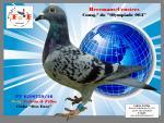 """PT 6290739/16 – Consg.º """"Olympiade 003"""" e linha """"Den Euro"""" (Heremans-Ceusters)"""